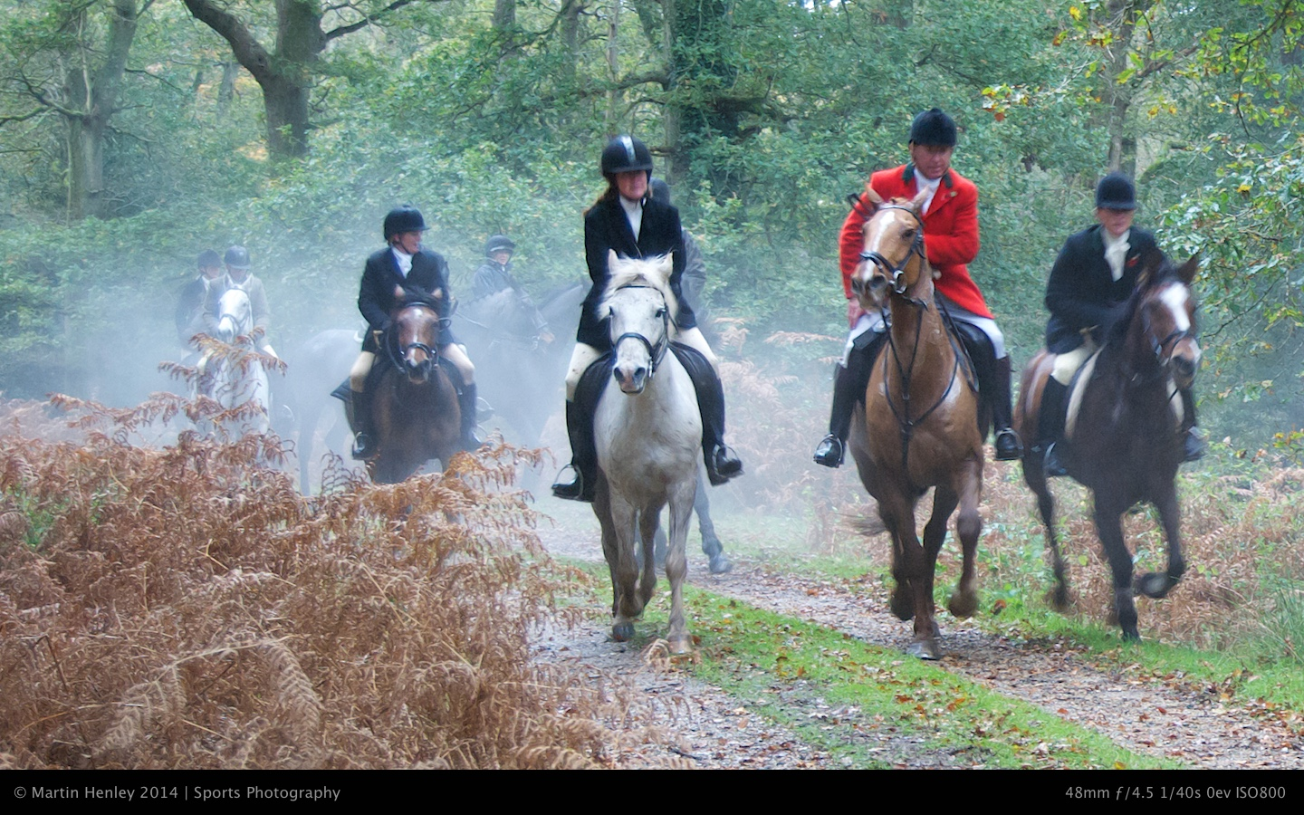 Hunt New Forest Photos  117 2008-11-01