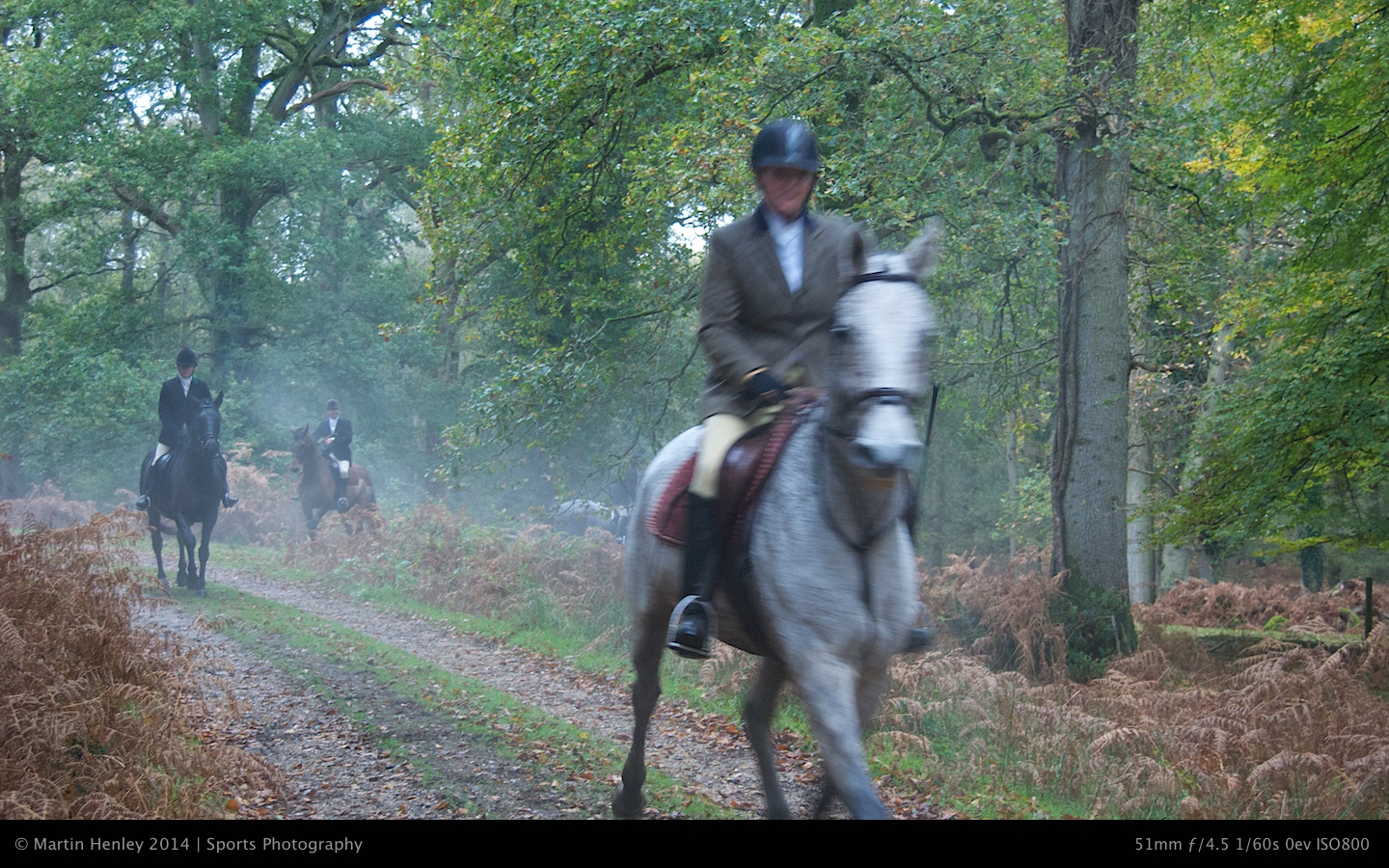 Hunt New Forest Photos  118 2008-11-01