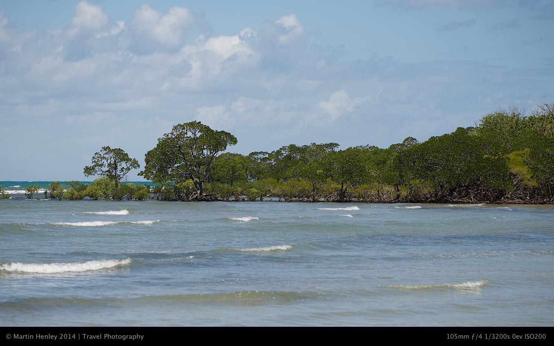 Cape Tribulation Photos 268 2014-09-29
