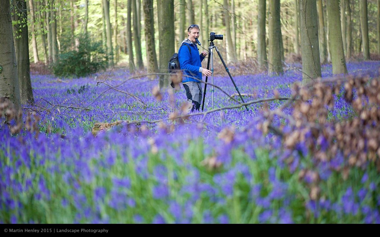 Sussex Bluebells, April 2014 6