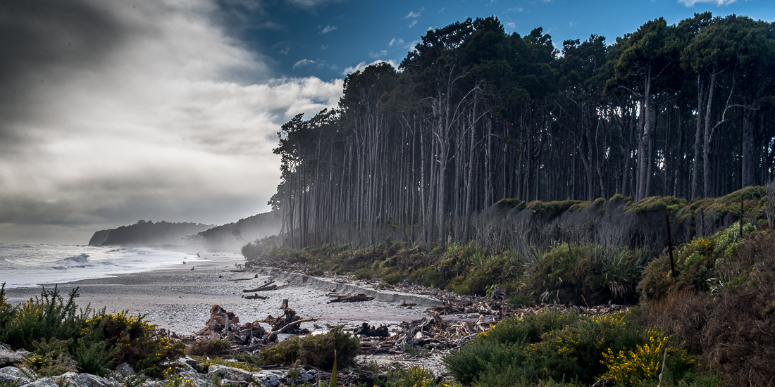 Maori Beach, Bruce Bay-2