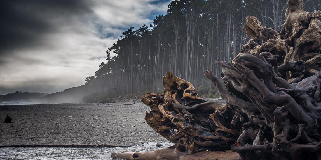 Maori Beach, Bruce Bay-4