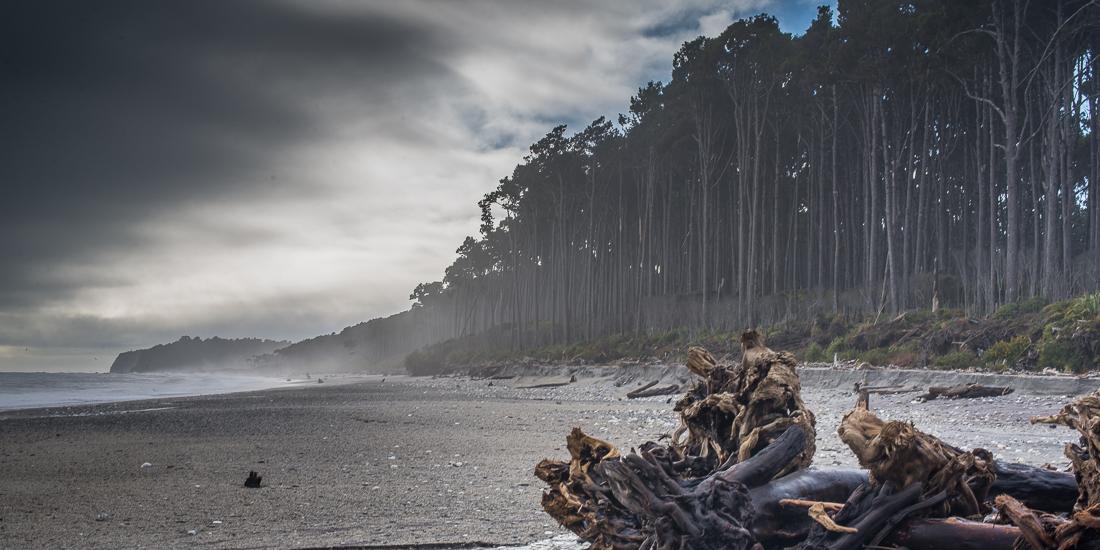 Maori Beach, Bruce Bay-5